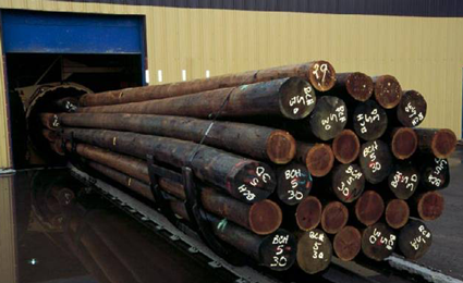 Treated Wood Poles